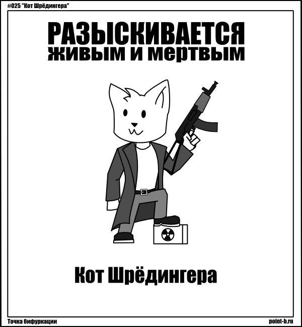 Суть кота шредингера