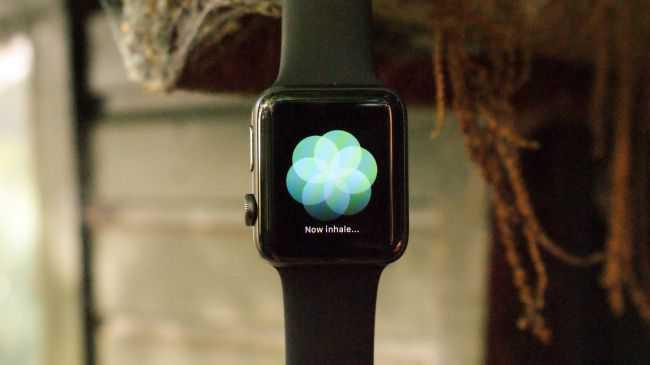 apple-watch 3 цена